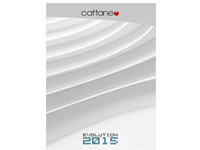 CATTANEO 2015